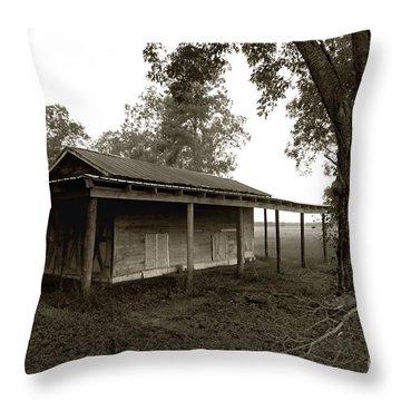 Horse Shelter Throw Pillow by Joseph G Holland