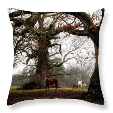 Throw Pillow featuring the photograph Horse Under Tree by Greg Mimbs