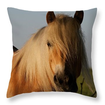 Horse With No Name Throw Pillow by Gary Bridger
