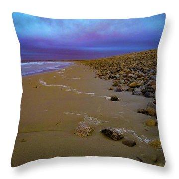 Horseneck Beach Throw Pillow