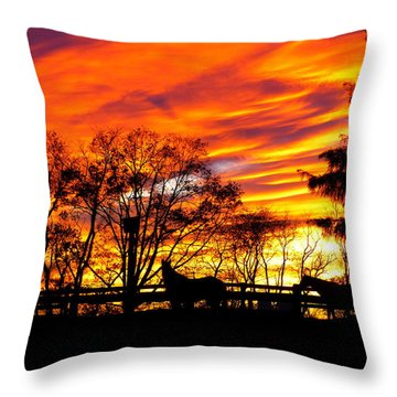 Horses And The Sky Throw Pillow by Donald C Morgan