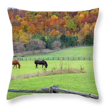 Horses Contentedly Grazing In Fall Pasture Throw Pillow
