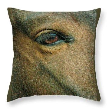 Horses Eye Throw Pillow