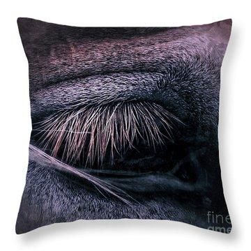 Horses Eye-color Throw Pillow