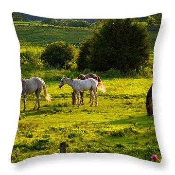 Horses Grazing In Evening Light Throw Pillow