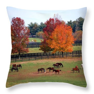 Horses Grazing In The Fall Throw Pillow
