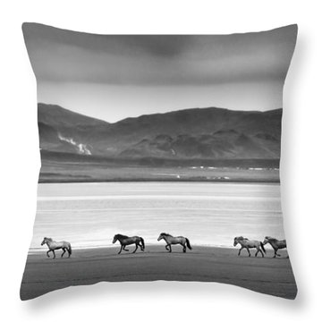 Horses, Iceland Throw Pillow