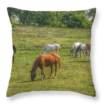 1003 - Horses In A Pasture I Throw Pillow