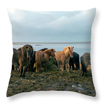 Horses In Iceland Throw Pillow