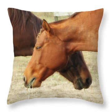 Horses In Sinc Throw Pillow by MTBobbins Photography