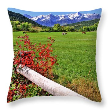Horses In The San Juans Throw Pillow by Scott Mahon