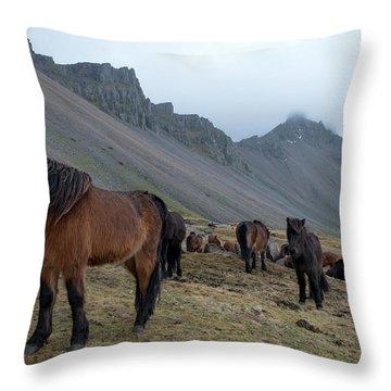 Throw Pillow featuring the photograph Horses Near Vestrahorn Mountain, Iceland by Dubi Roman