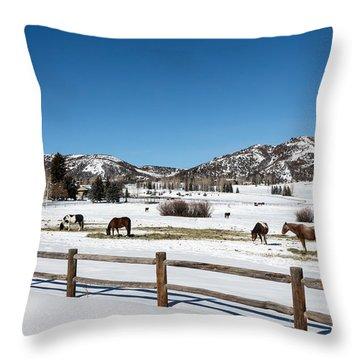 Horses On A Small Farm Near The Aspen Airport Throw Pillow