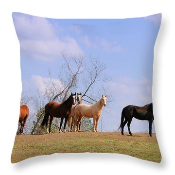 Throw Pillow featuring the photograph Horses On The Hill by Bonnie Willis