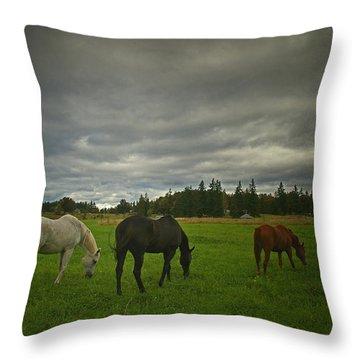 Horses Under Heavy Sky Throw Pillow