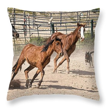 Horses Unlimited #3a Throw Pillow