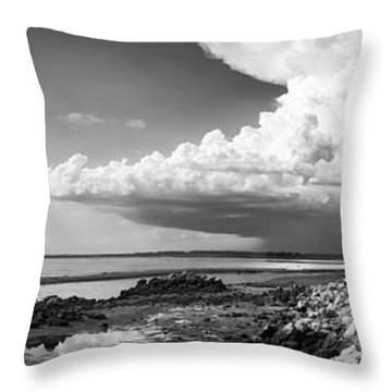 Throw Pillow featuring the photograph Horseshoe Beach by Howard Salmon