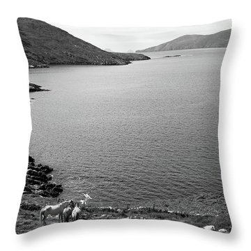 Horseshoe Coast Throw Pillow