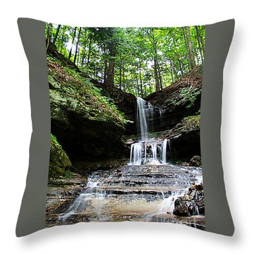 Throw Pillow featuring the photograph Horseshoe Falls #6736 by Mark J Seefeldt