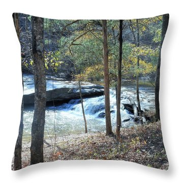 Throw Pillow featuring the photograph Horseshoe Falls by Kay Gilley