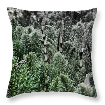 Horsetail Dewpoint Throw Pillow