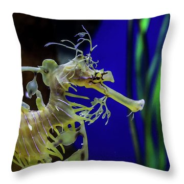 Horsey Throw Pillow