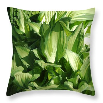 Hosta 5416 Throw Pillow