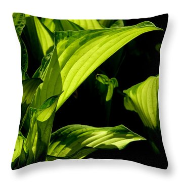 Hosta 561 Throw Pillow