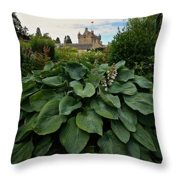 Hosta At Cowdor Castle Throw Pillow