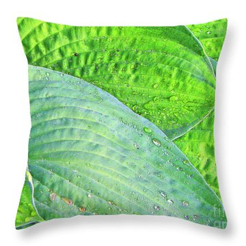 Throw Pillow featuring the photograph Hosta Lavista Baby by Traci Cottingham