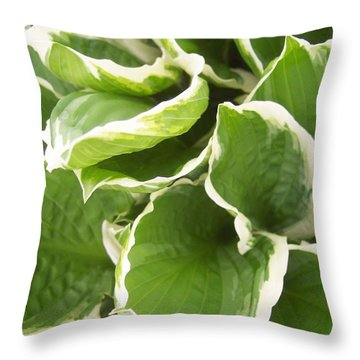 Hostas 2 Throw Pillow by Anna Villarreal Garbis