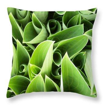 Hostas 3 Throw Pillow by Anna Villarreal Garbis