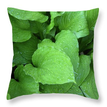 Hostas After The Rain IIi Throw Pillow
