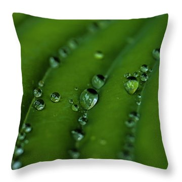 Hostas And Raindrops Throw Pillow