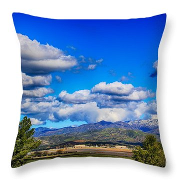 Hot Air Balloon Ride In Orange County Throw Pillow by Mariola Bitner