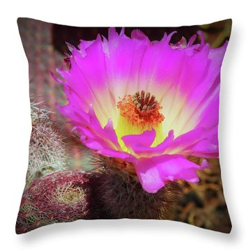Hot In Pink Throw Pillow