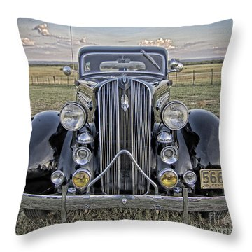 Hot Off The Grill Throw Pillow