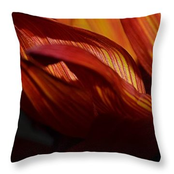 Hot Orange Sunflower Throw Pillow by Nadalyn Larsen