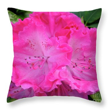 Hot Pink Rhoda Throw Pillow