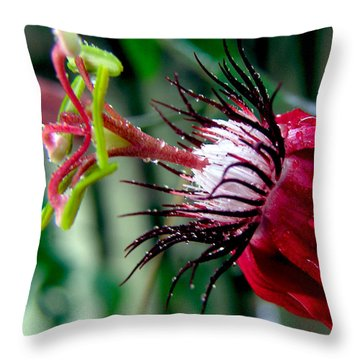 Hot Red Passion Throw Pillow