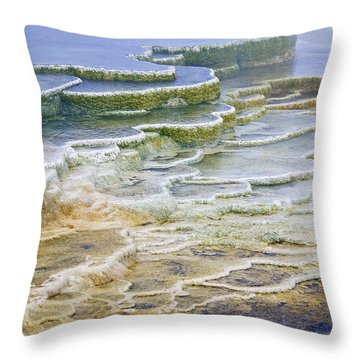 Throw Pillow featuring the photograph Hot Springs Runoff by Gary Lengyel