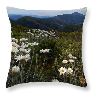 Hotham  Throw Pillow