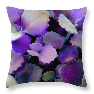 Hothouse Succulents Throw Pillow