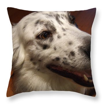 Throw Pillow featuring the photograph 'houlie' by Mark Alan Perry
