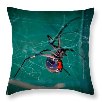 Hour Glass Of Death Throw Pillow