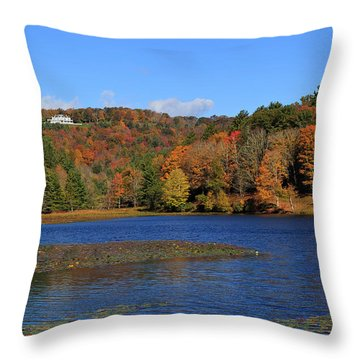 House In The Mountains Throw Pillow