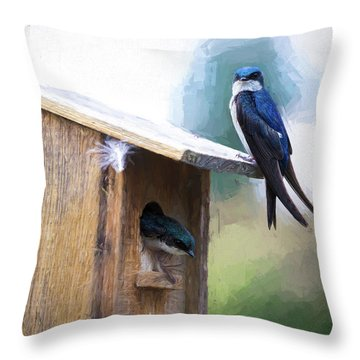 Throw Pillow featuring the photograph House Of Bluebirds by James BO Insogna