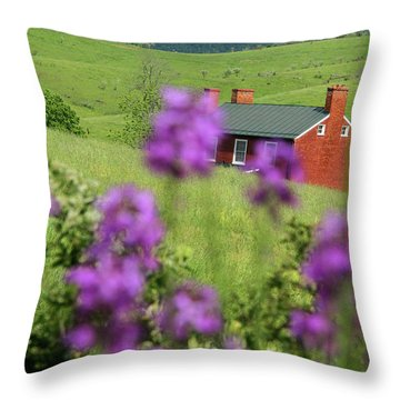 House On Virginia's Hills Throw Pillow