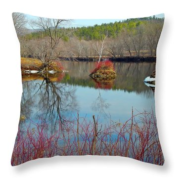 Housesitting 41 Throw Pillow by George Ramos