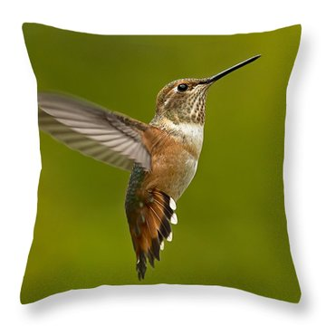Hover Throw Pillow